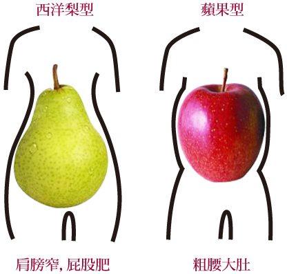 夏日瘦身,大作戰,只有適合自己的減重才能有效又正確@益曼中醫
