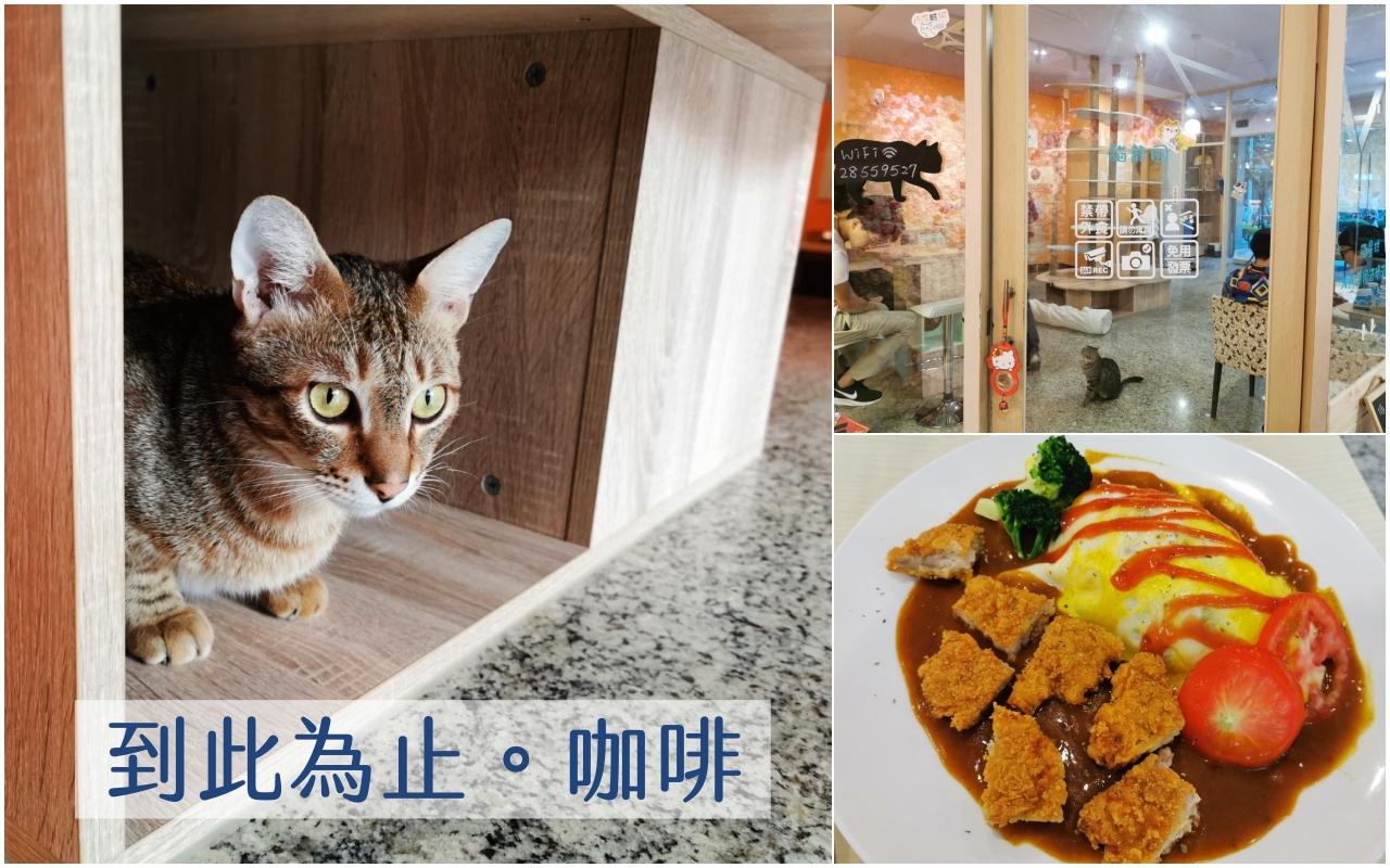三重咖啡廳:到此為此。咖啡,店內有很多貓咪可以互動 @吳大妮。Annie