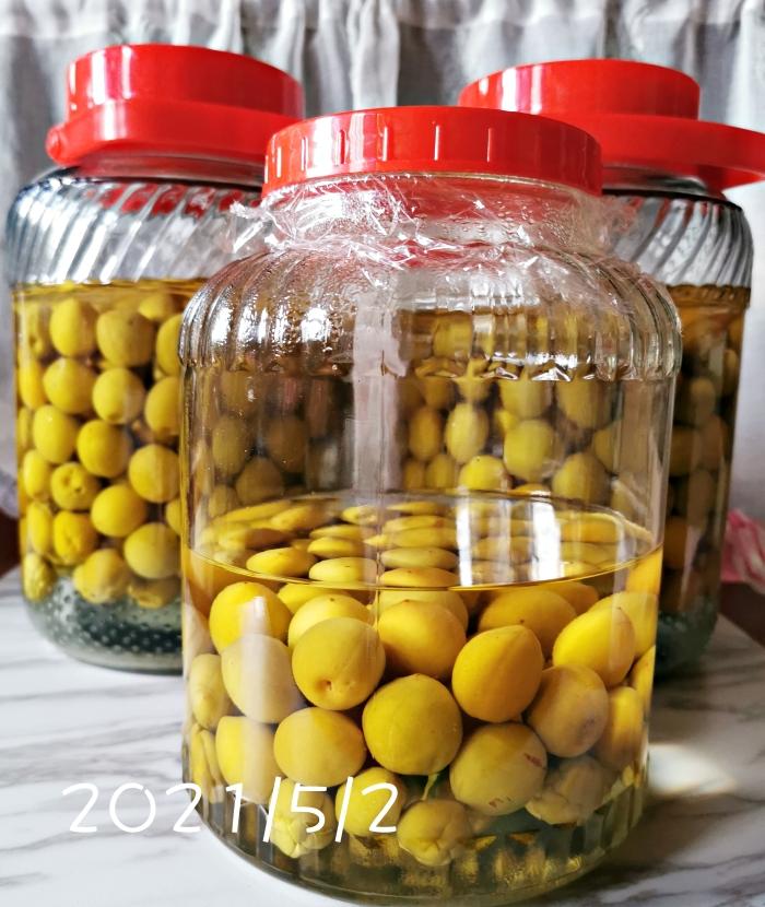 在家就能簡單釀(泡)梅酒,梅酒製作過程記錄